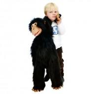 Large Primates