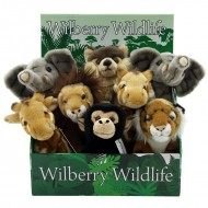 Wilberry Wild