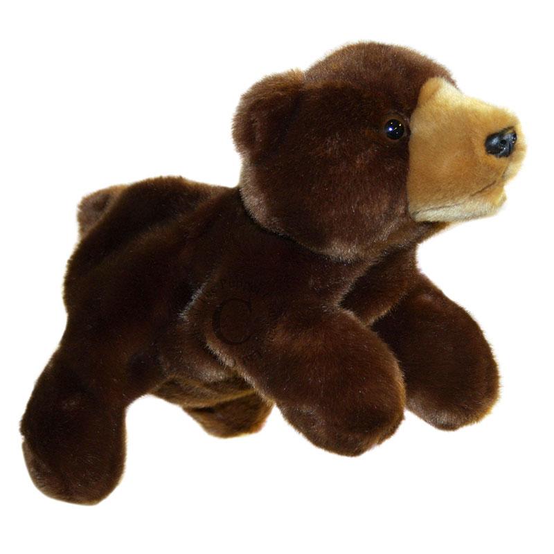 Bear - Full-Bodied