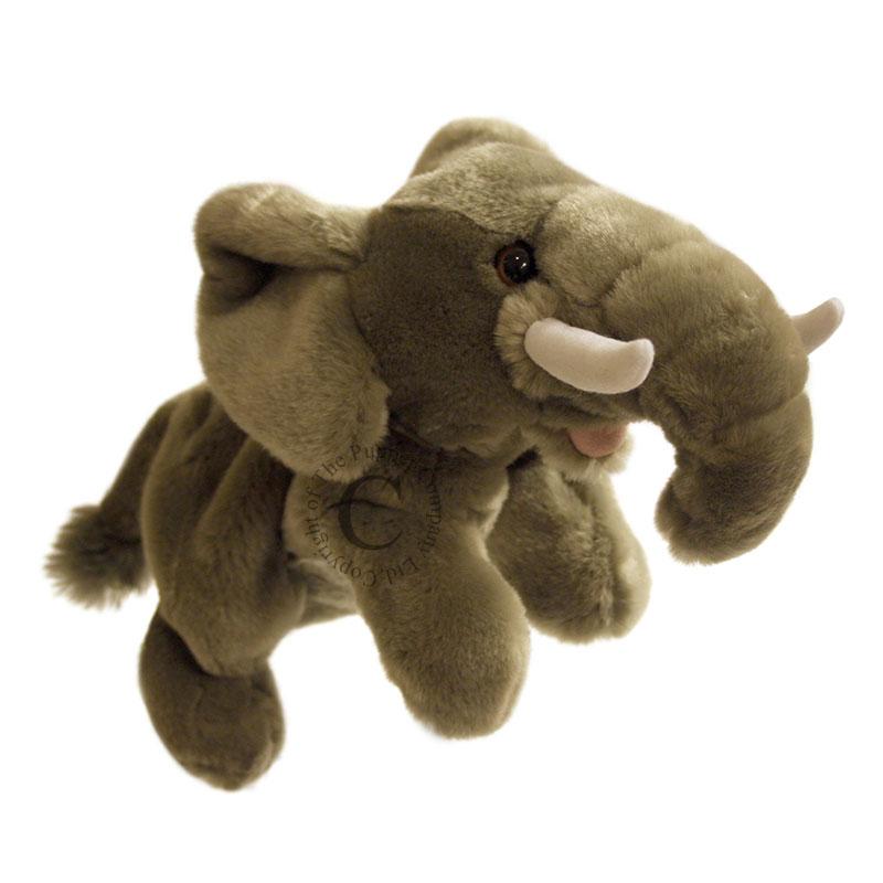 Elephant - Full-Bodied