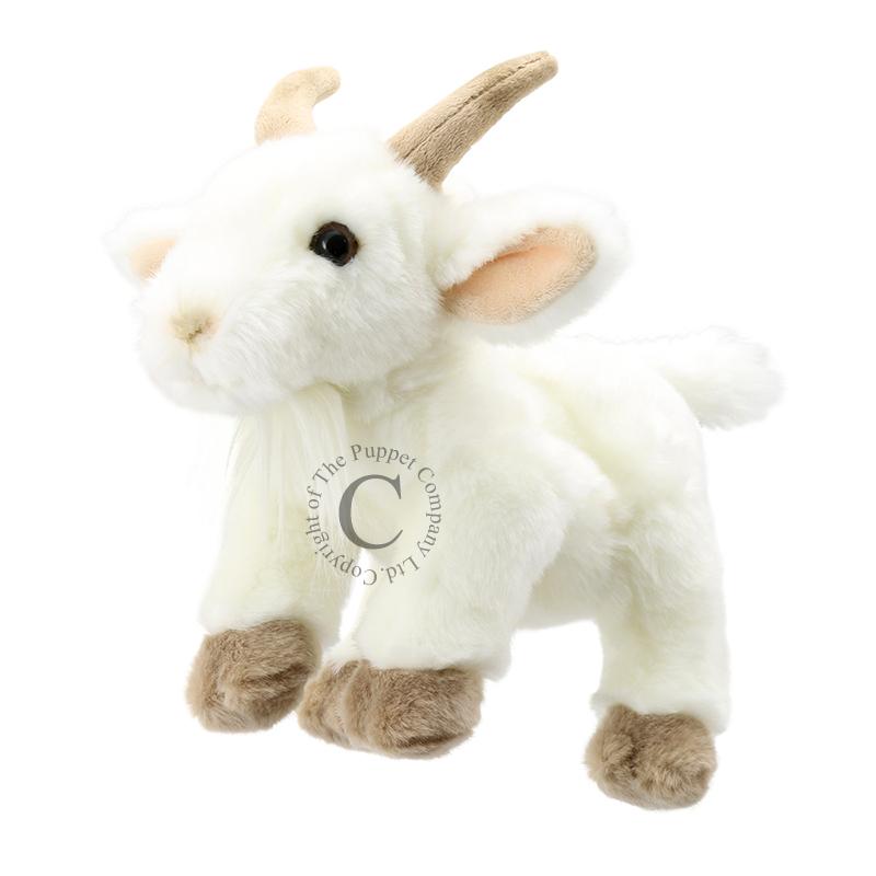 Goat - Full-Bodied