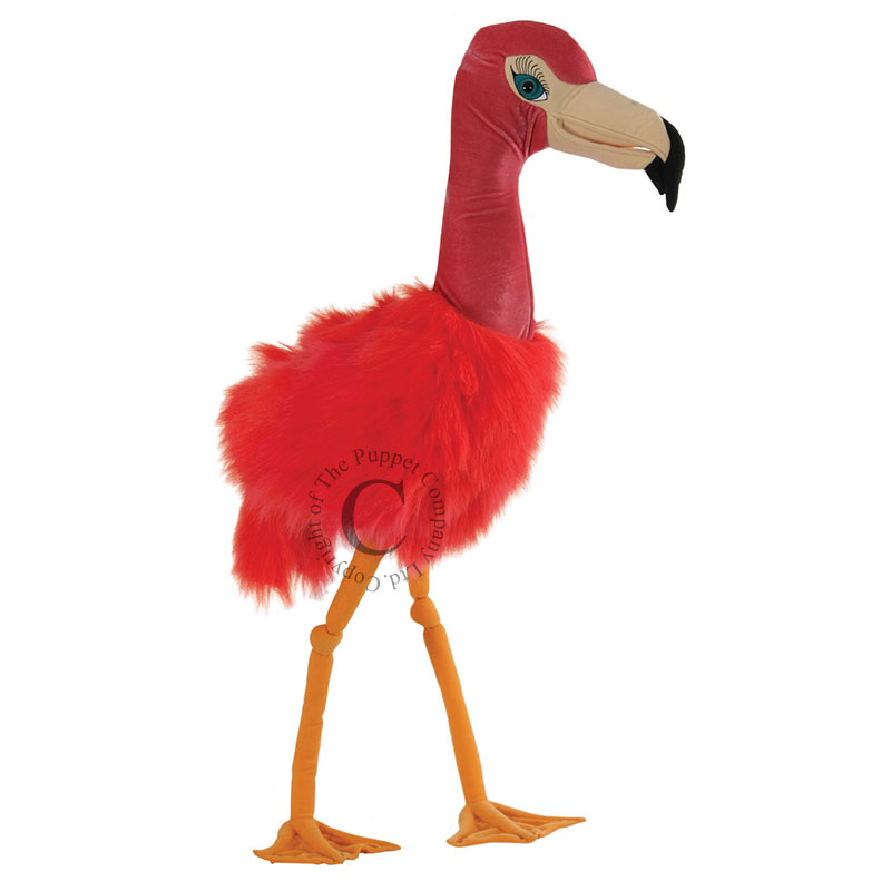 Flamingo - Giant Birds