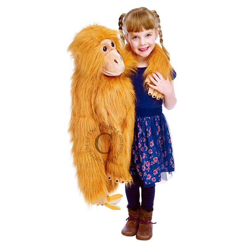 Orangutan - Large Primates