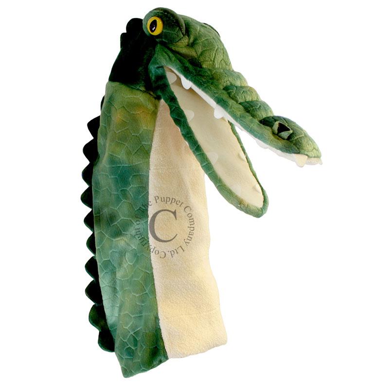 Crocodile - Long-Sleeved